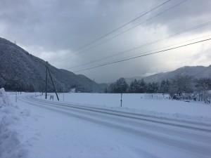 雪復活‼︎
